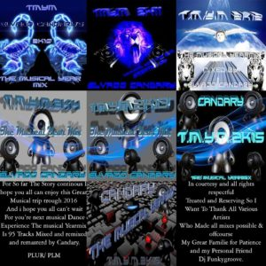 T.M.Y.M.2K16 – The Musical Yearmix of 2016