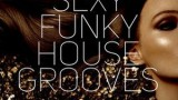 Sexy Funky House Grooves 2018 DJ-Dan-NT Mix