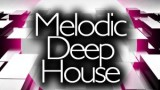 DJ Codo & Party DJ Rudie Jansen 1e Kwartaalmix Deep House 2021 (Live)